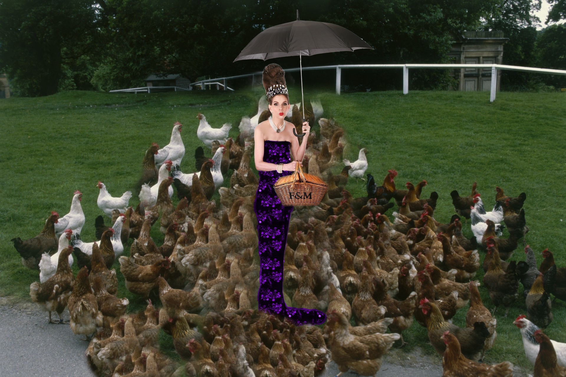 Tyne O'Connell with hens in park F&M picnic basket purple dress
