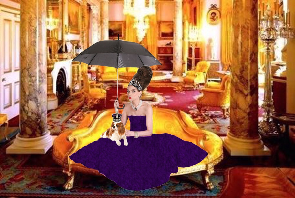 Tyne Oconnell in mayfair with spaniel and champagne brolly purple ballgown
